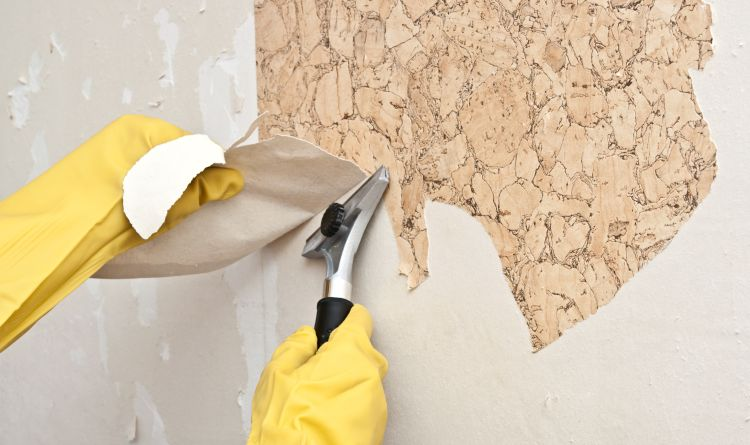 wallpaper removal danvers ma